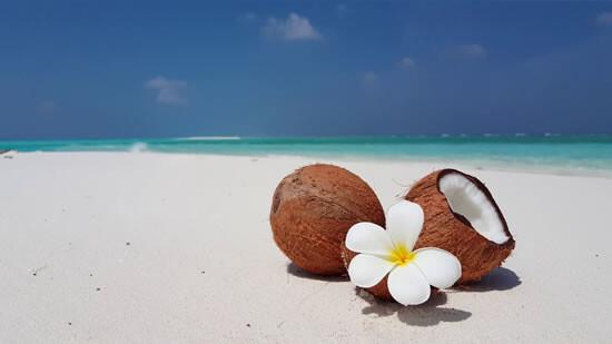 Экзотические цветы и кокос